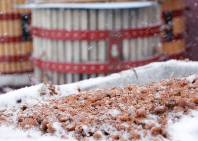 Pillitteri Estates Winery, Icewine, Photo Gallery