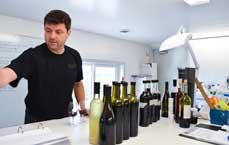 Pillitteri Estates Winery, Photo Gallery